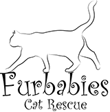 Furbabies Cat Rescue